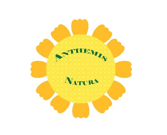 anthemis natura