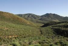Estepa semiarida en las montañas prelitorales de Mazarrón