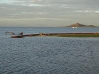 Humedal de la Lengua de La Vaca y Mar Menor_F. Javier Puertas.